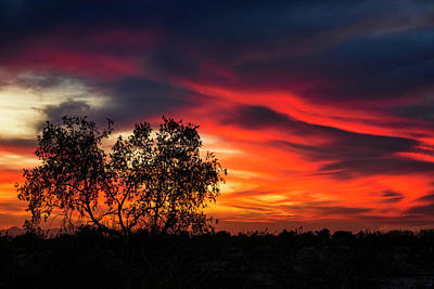 Photograph - A Silhouette Sunset  by Saija Lehtonen