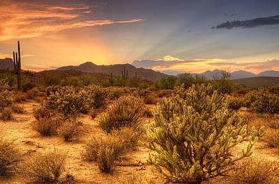 Photograph - A Sonoran Evening  by Saija  Lehtonen