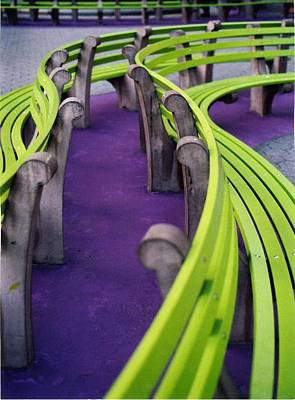 A Study In Purple And Green Art Print