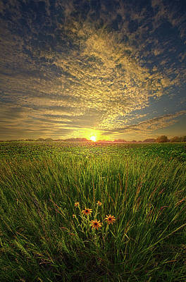 Photograph - A Time Of Gifts by Phil Koch
