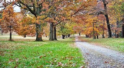 Art Print featuring the photograph A Walk In The Park by Robert Culver