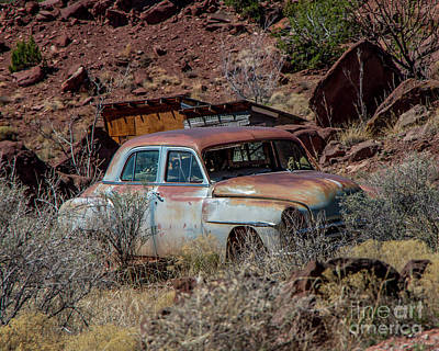 Photograph - Abandoned by Steve Whalen