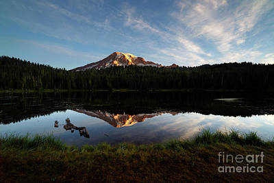 Photograph - Above It All by Beve Brown-Clark Photography