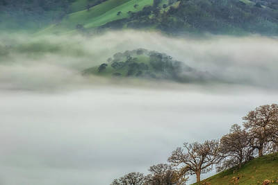 Photograph - Above The Valley by Marc Crumpler