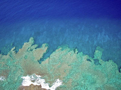 Photograph - Abstract Aerial Reef by Denise Bird