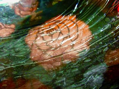 Photograph - Abstract Rose by Stephanie Moore