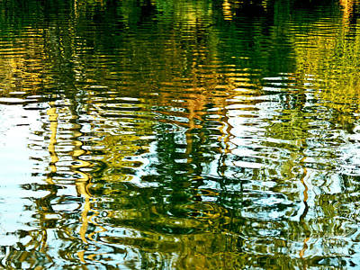 Austin Artist Digital Art - Reflections And Patterns In Nature by Carol F Austin