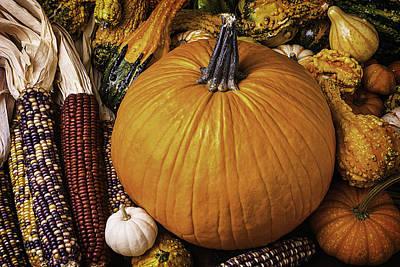 Abundance Photograph - Abundance Of Autumn by Garry Gay