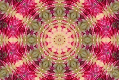 Digital Art - Ac Joy Mandala by J McCombie