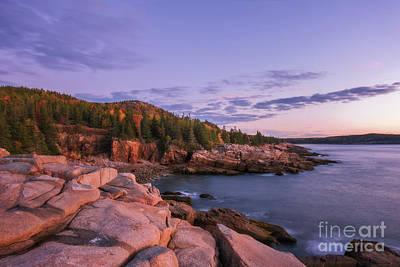 Photograph - Acadia Sunrise by Sharon Seaward