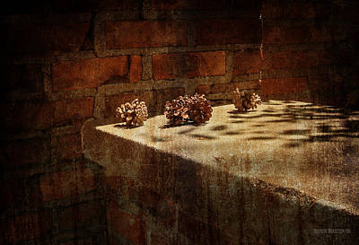Pine Cones Wall Art - Photograph - Accidental Still Life  by Garth Glazier