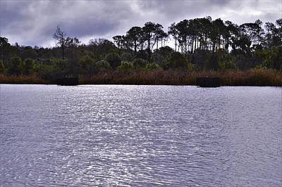 Photograph - Across The Withlacoochee River by Warren Thompson