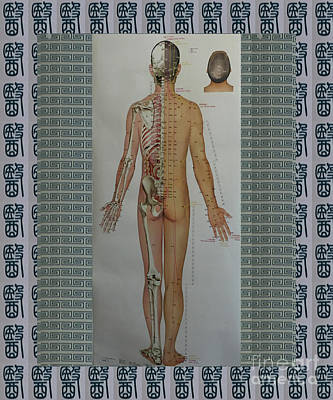 Photograph - Acupuncture Full Body Map Points Posters Pod Pillows Curtains Duvets Tote Bags Phone Cases Greetings by Navin Joshi