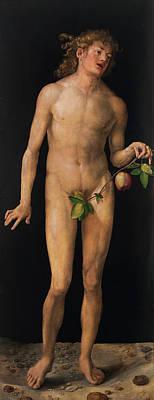 Adam Painting - Adam by Albrecht Durer