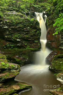 Photograph - Pennsylvania Adams Falls by Adam Jewell