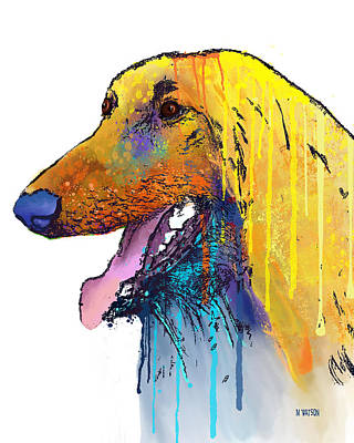 Digital Art - Afghan Hound by Marlene Watson
