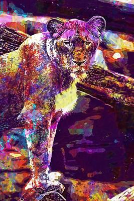 Digital Art - Africa Animal Big Carnivore Cat  by PixBreak Art
