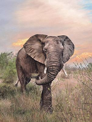 Painting - African Elephant Painting by Rachel Stribbling
