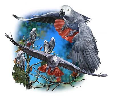 Digital Art - African Grey Parrots by Owen Bell