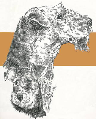 Mixed Media - Airedale by Barbara Keith