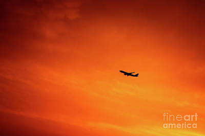 Photograph - Airplane In The Sky by Anna Om
