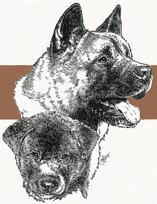 Mixed Media - Akita Ken by Barbara Keith