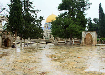 Photograph - Al Aqsa Domes by Munir Alawi