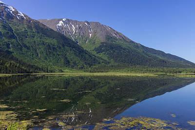 Photograph - Alaskan Reflection by David Warrington