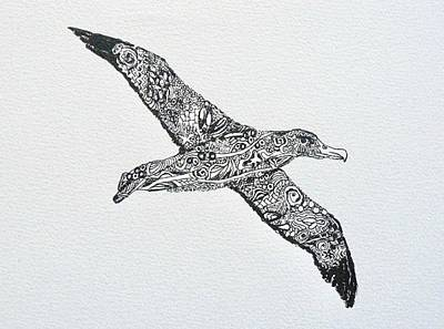 Albatross Original
