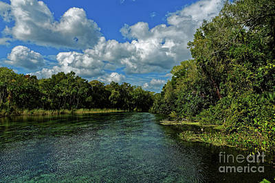 Photograph - Alexander Creek by Paul Mashburn
