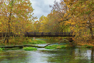 Photograph - Alley Spring River by Jennifer White