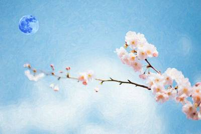 Painting - Almond Flowers by Celestial Images