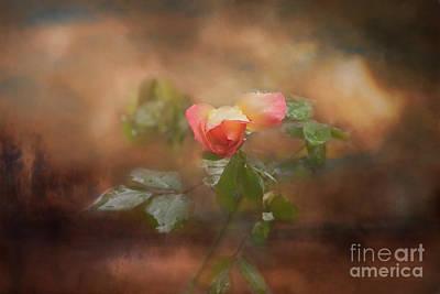 Photograph - Alone by Joan Bertucci