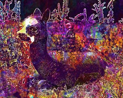 Digital Art - Alpaca Vicugna Pacos Pako Andes  by PixBreak Art