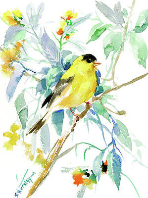 Goldfinch Drawing - American Goldfinch by Suren Nersisyan
