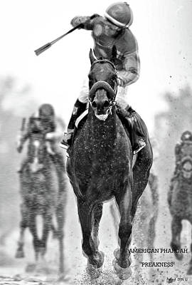 American Pharoah And Victor Espinoza Win The 2015 Preakness Stakes Art Print