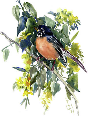 Painting - American Robin by Suren Nersisyan