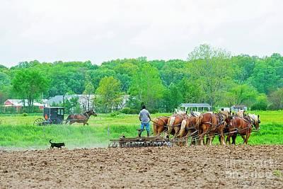 Photograph - Amish Boy Disking by David Arment