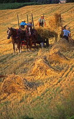Amish Boys Wheat Harvest  Art Print by Blair Seitz