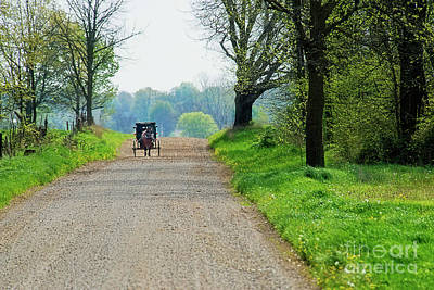 Photograph - Amish Buggy Gravel Road by David Arment