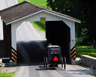 Photograph - Amish In Pennsylvania by Jack Moskovita