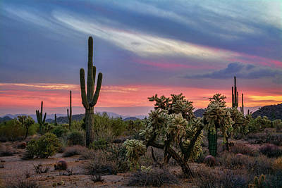 Photograph - An Enchanted Desert Evening  by Saija Lehtonen