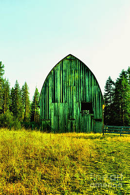 Moody Trees - An old Hay barn by Jeff Swan