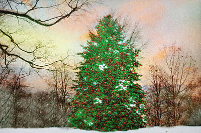Photograph - And So This Is Christmas by Diana Angstadt