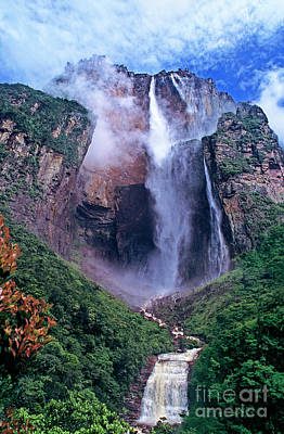 Photograph - Angel Falls In Canaima National Park Venezuela by Dave Welling