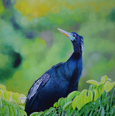 Painting - Anhinga by Manuel Lopez