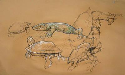 Beverly Hills Drawing - Tampere City Sarkanniemi Aquarium Animals / Finland by Jani Heinonen