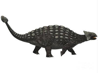 Ankylosaurus On White Art Print by Corey Ford