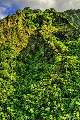 Photograph - The Climb Stairway To Heaven Hawaiian Landscape Hiking Trail Art by Reid Callaway