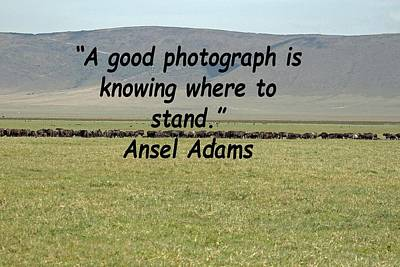 Photograph - Ansel Adams Quote by Tony Murtagh